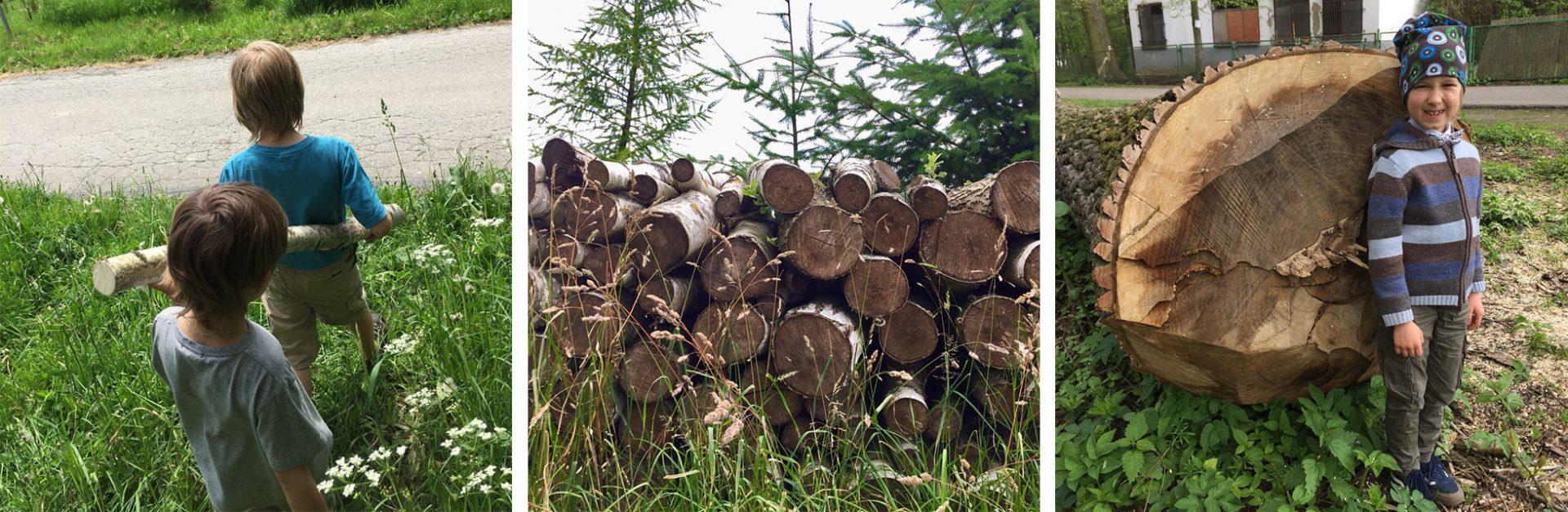 drewno-do-strugania